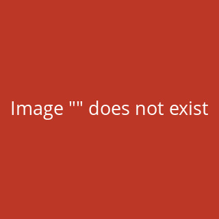 Therma Plus, wasserdichtes Catering- Thermometer